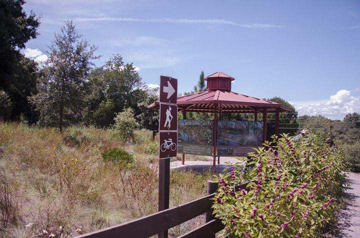 Hiking and Biking at Ferndale Preserve