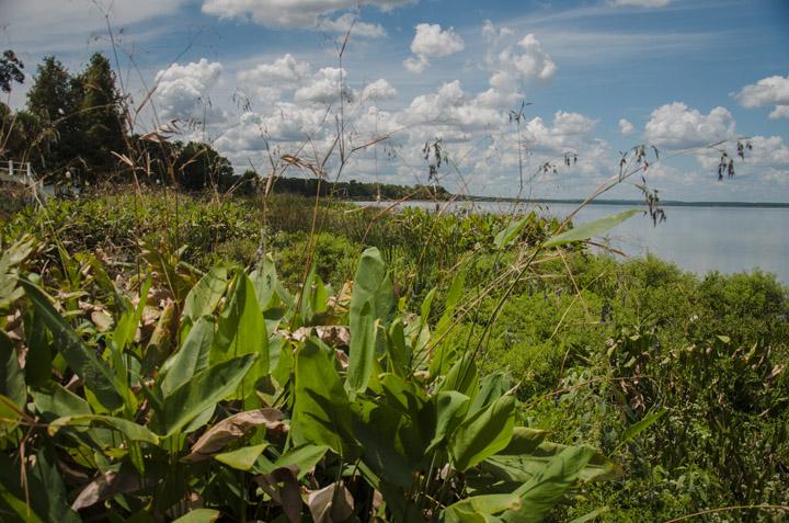 Lake Apopka at Newton Park